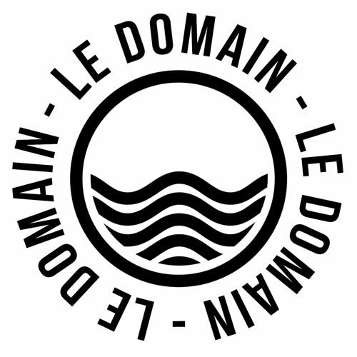LeDomain's avatar