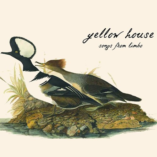 Yellow House's avatar