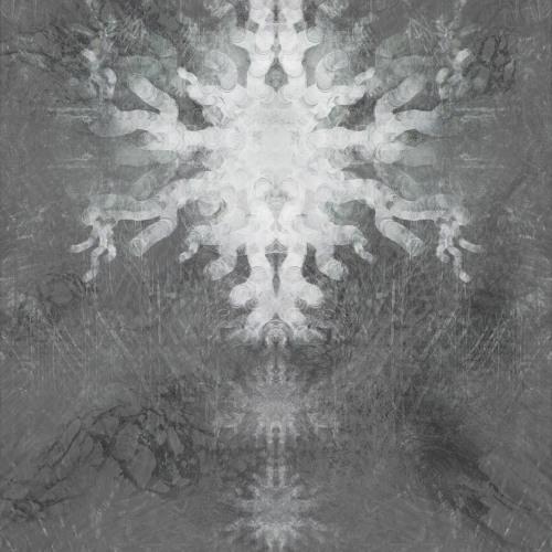 Eukarya's avatar