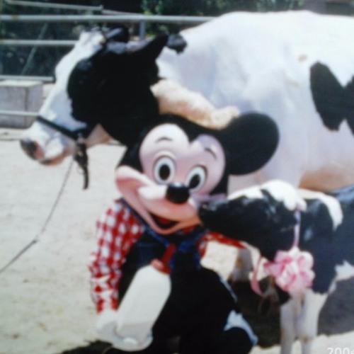 Oh Mickey's avatar