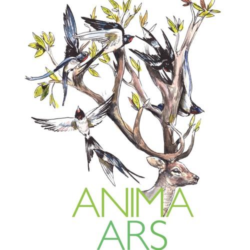Anima Ars's avatar