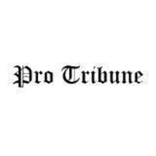 Pro Tribune's avatar