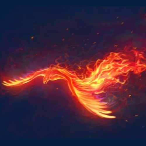 The Phoenix Concept's avatar