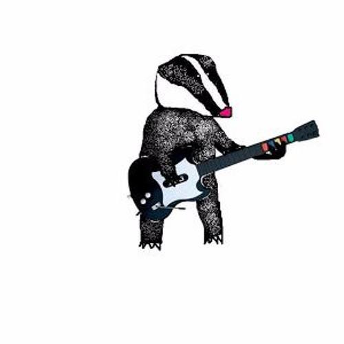 BADGER KULL's avatar