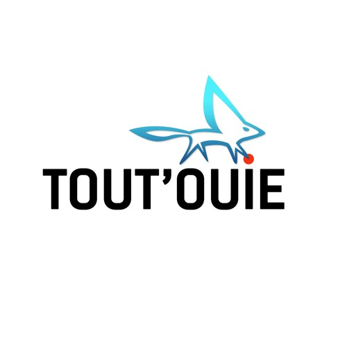 Agence TOUT'OUIE's avatar