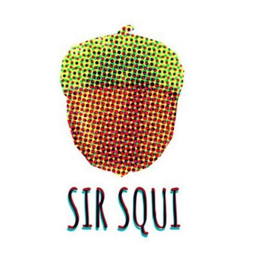 Sir Squi's avatar