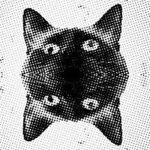 사중 신호's avatar