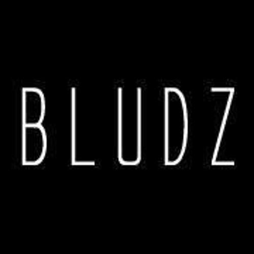 BLUDZ's avatar
