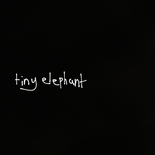 tiny elephant's avatar