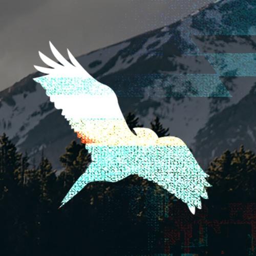 @skog-music's avatar