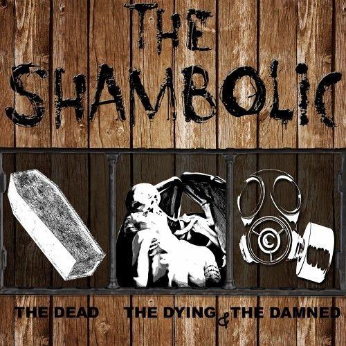 The Shambolic's avatar