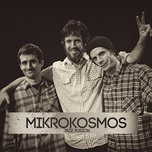 Mikrokosmos Jazz Fusion's avatar