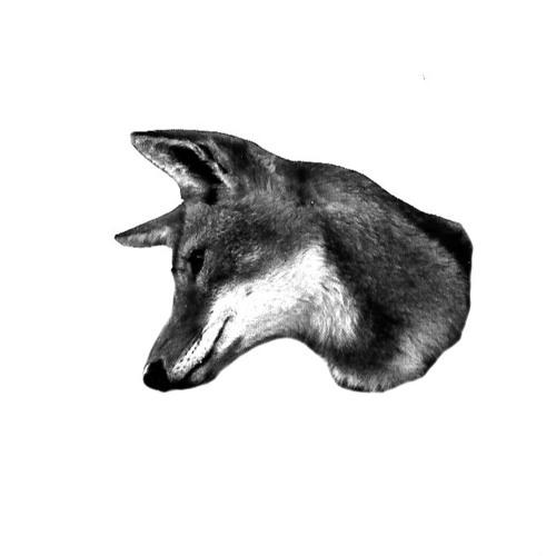 g_horses's avatar