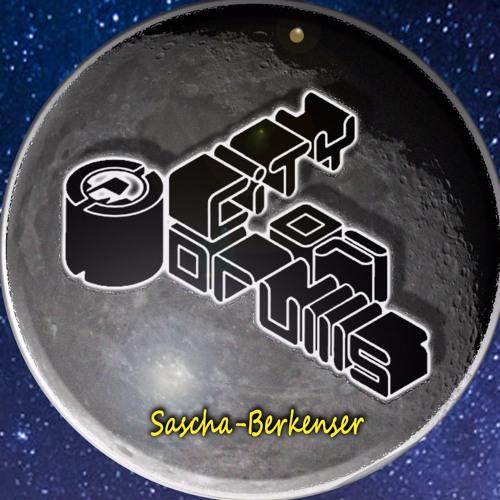 Sascha Berkenser's avatar