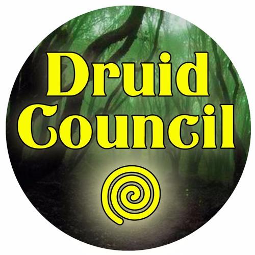 Druid Council's avatar