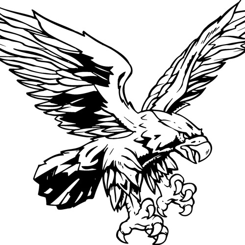 hawk's avatar