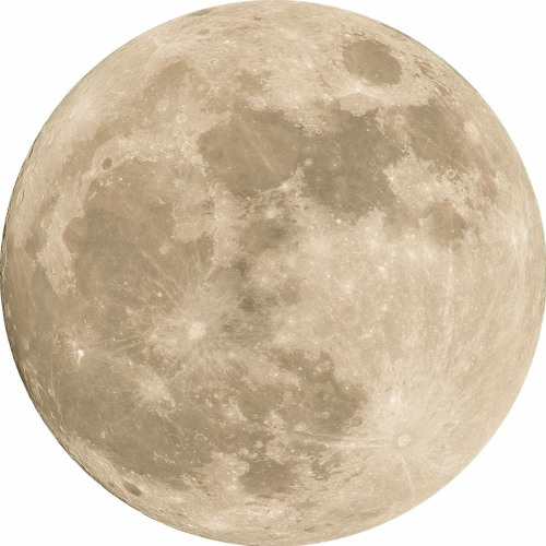 MoonArt's avatar