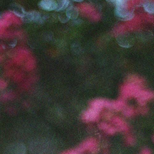 bu|rrell Songs