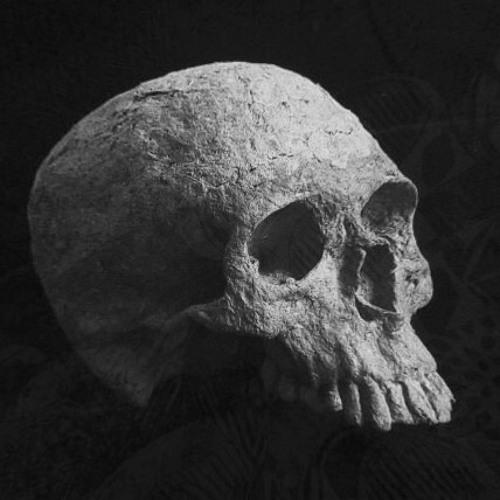 witgezicht's avatar
