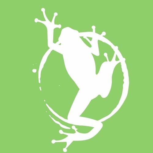 Dart Frog's avatar