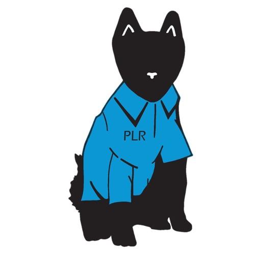 Plot Line Records's avatar