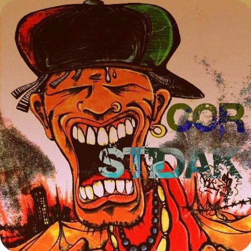 COR STIDAK's avatar