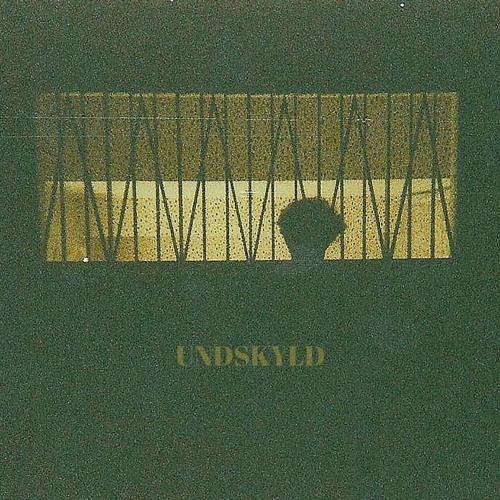 UNDSKYLD's avatar