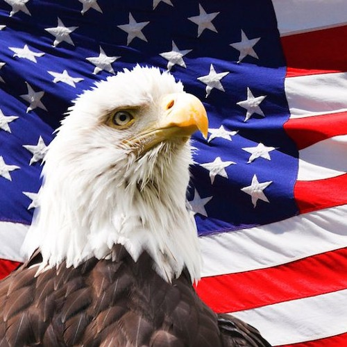 American Unionist's avatar