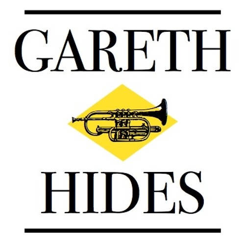 Gareth Hides's avatar