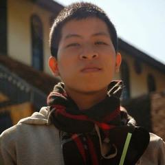 NguyenVuHoangViet