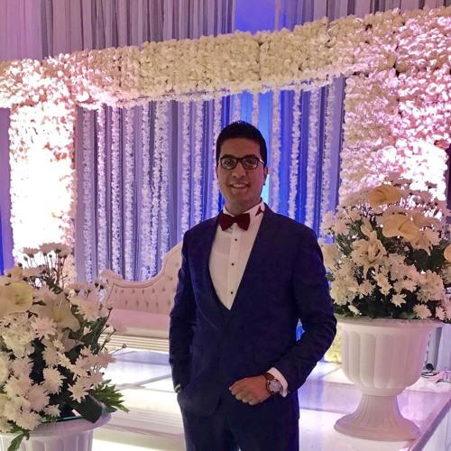 Abdelrhman Elazhary's avatar
