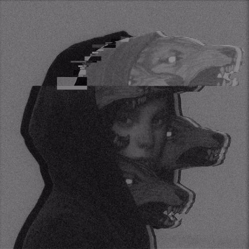 Woo Fernando's avatar