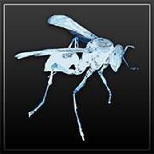 Parasitica's avatar