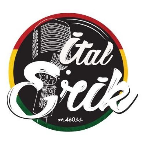Ital Erik's avatar