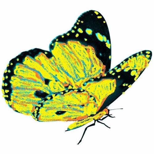 Butterflies's avatar
