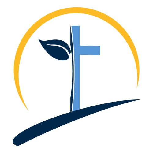 New Grace Baptist Church's avatar