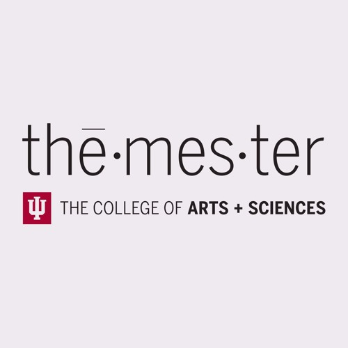 Themester's avatar