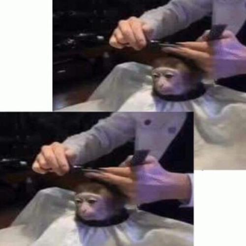 jimmy miami's avatar