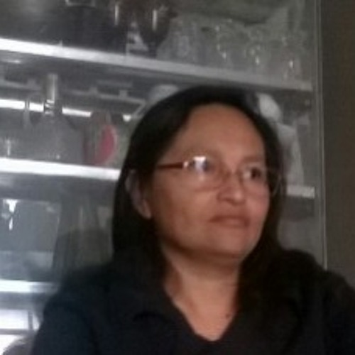 Ana Irene Vilchez y's avatar
