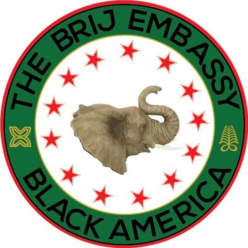 The BRIJ Embassy's avatar