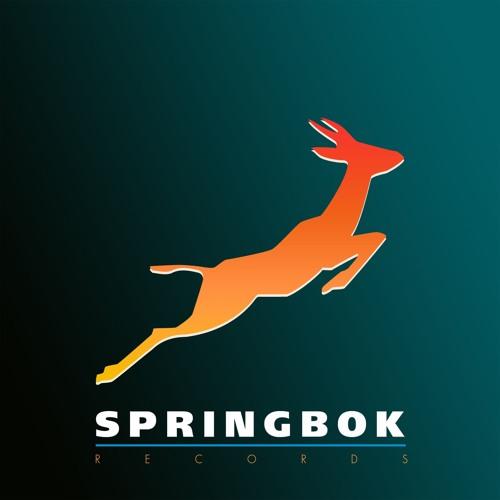 Springbok Records's avatar