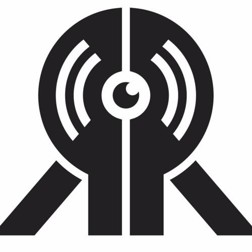 Record Realization's avatar