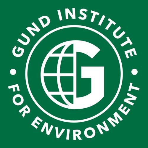 Gund Institute's avatar