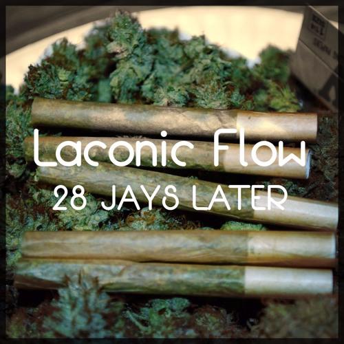 Laconic Flow's avatar