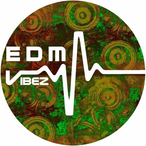 Edm Vibez's avatar