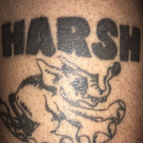Harsh Riddims's avatar