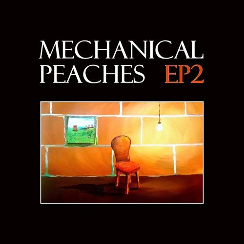 MechanicalPeaches's avatar