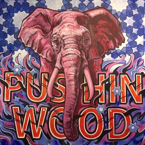 Pushin Wood Soundsystem's avatar