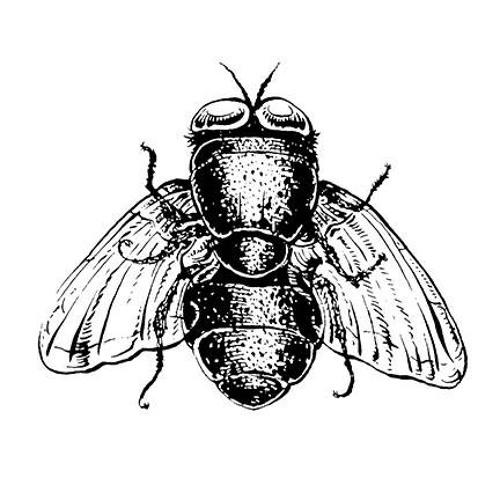 bottleflies's avatar