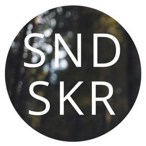 Soundseeker Records's avatar